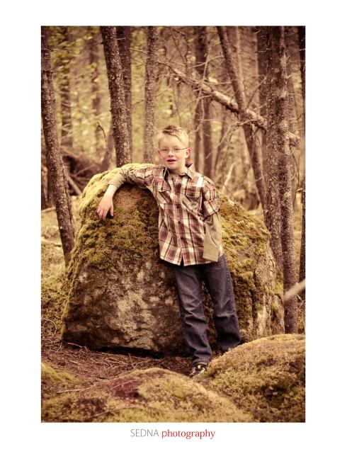 Single_Roberts_David_Trees